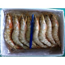 Frozen White Prawn