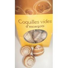 Escargots Shell